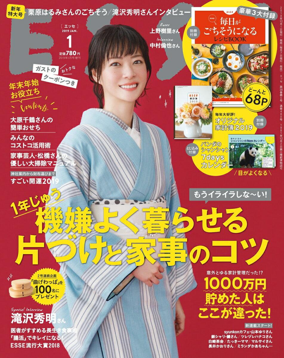 増刊 ESSE (エッセ)新年特大号 2019年 01月号 [雑誌]