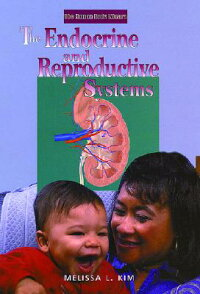 The_Endocrine_and_Reproductive