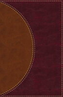 Amplified Reading Bible, Imitation Leather, Brown, Indexed: A Paragraph-Style Amplified Bible for a