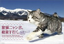 【壁掛】旅猫ニャン吉、絶景を行く。(2018カレンダー)