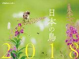 日本の鳥 JTBのカレンダー(2018) ([カレンダー])