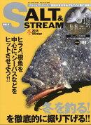 SALT & STREAM (ソルトアンドストリーム) VOL.9 2018年 02月号 [雑誌]