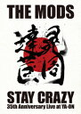 STAY CRAZY [ THE MODS ]
