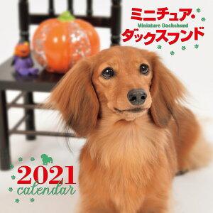 2021年 大判カレンダー ミニチュア・ダックスフンド (誠文堂新光社カレンダー) [ 井川 俊彦 ]