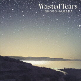 WASTED TEARS [ 浜田省吾 ]