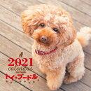2021年 大判カレンダー トイ・プードル