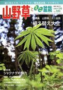 山野草とミニ盆栽 2017年 03月号 [雑誌]