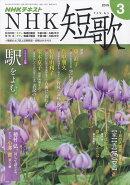 NHK 短歌 2019年 03月号 [雑誌]