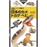 日本のカメ・トカゲ・ヘビ増補改訂 (山渓ハンディ図鑑)