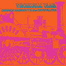 【輸入盤】Psychedelic Train: Expanded Edition