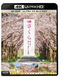 さくら 春を彩る 華やかな桜のある風景 (4K ULTRA HD)