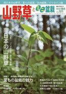 山野草とミニ盆栽 2017年 05月号 [雑誌]