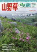 山野草とミニ盆栽 2018年 05月号 [雑誌]