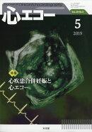 心エコー 2019年 05月号 [雑誌]
