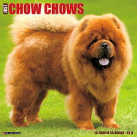 JustChowChows[WillowCreekPress]