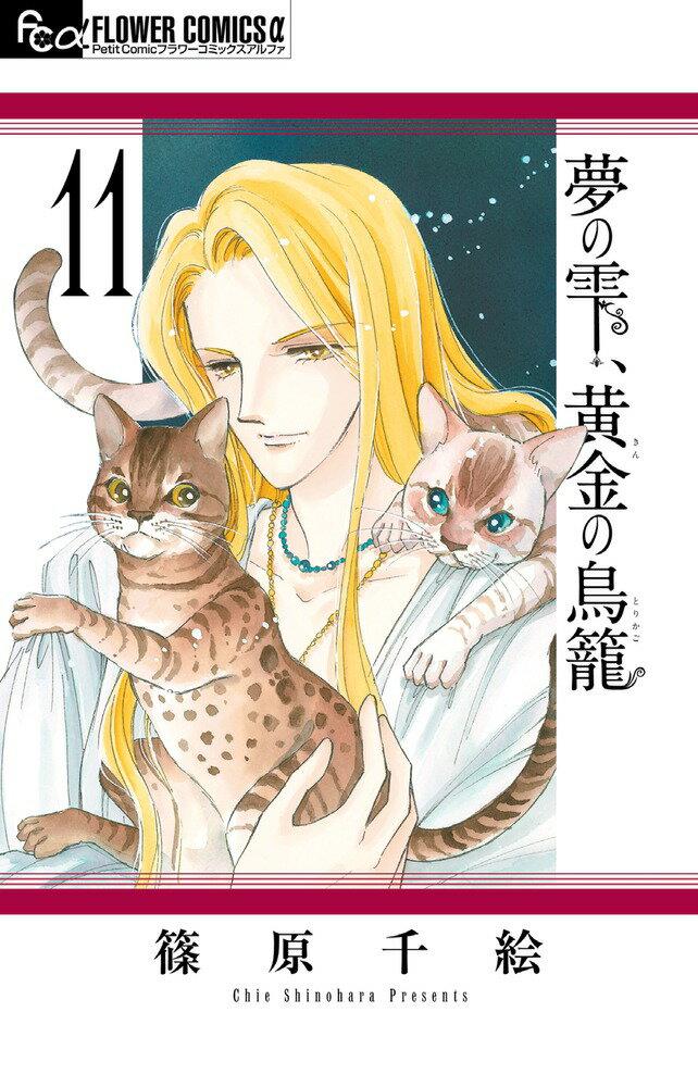 夢の雫、黄金の鳥籠 11 (フラワーコミックス) [ 篠原 千絵 ]
