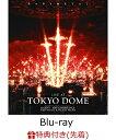 【先着特典】LIVE AT TOKYO DOME(オリジナルステッカー付き)【Blu-ray】 [ BABYMETAL ]