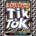 TIK & TOK -SNS NO.1 BEST MIX- [ DJ B-SUPREME ]