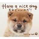 Have a nice day〜それでいいのだ!/α波オルゴール