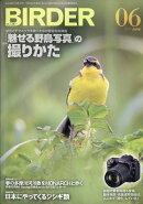 BIRDER (バーダー) 2017年 06月号 [雑誌]