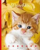 卓上 子猫のマンチカン BOOK型(2021年1月始まりカレンダー)