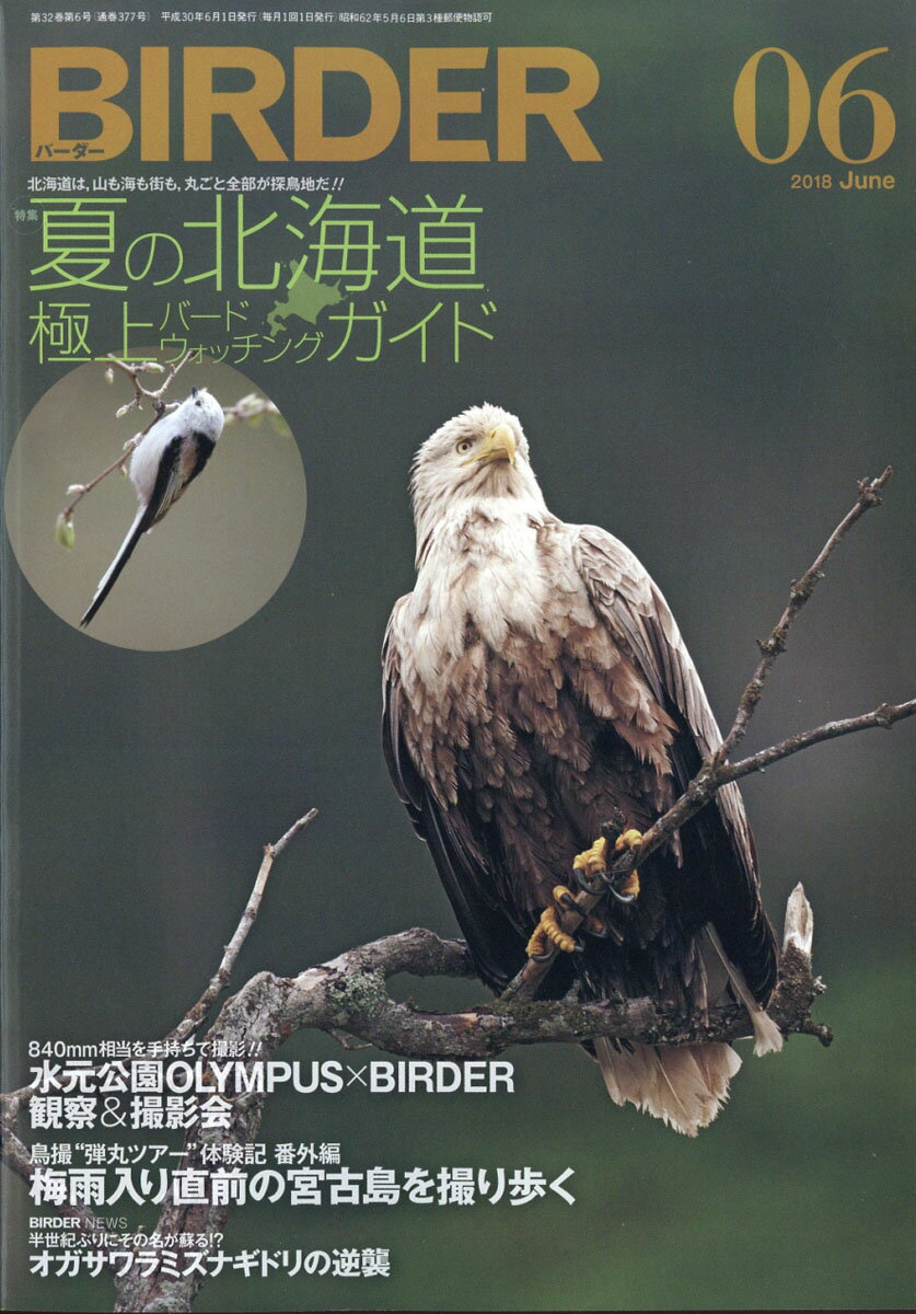 BIRDER (バーダー) 2018年 06月号 [雑誌]