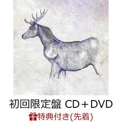 【先着特典】馬と鹿 (初回限定盤 CD+DVD) (映像盤) (特典内容未定)