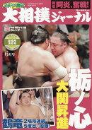 スポーツ報知大相撲ジャーナル 2018年 06月号 [雑誌]