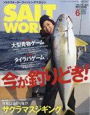 SALT WORLD (ソルトワールド) 2019年 06月号 [雑誌]