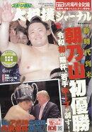 スポーツ報知大相撲ジャーナル 2019年 06月号 [雑誌]