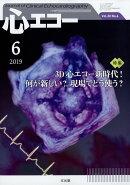 心エコー 2019年 06月号 [雑誌]