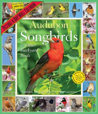 Audubon Songbirds and Other Backyard Birds Picture-A-Day Calendar 2018 CAL 2018-AUDUBON SONGBIRDS & O [ National Audubon Society ]