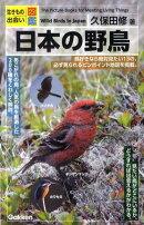 日本の野鳥