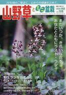 山野草とミニ盆栽 2018年 07月号 [雑誌]