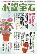 小説宝石 2019年 07月号 [雑誌]