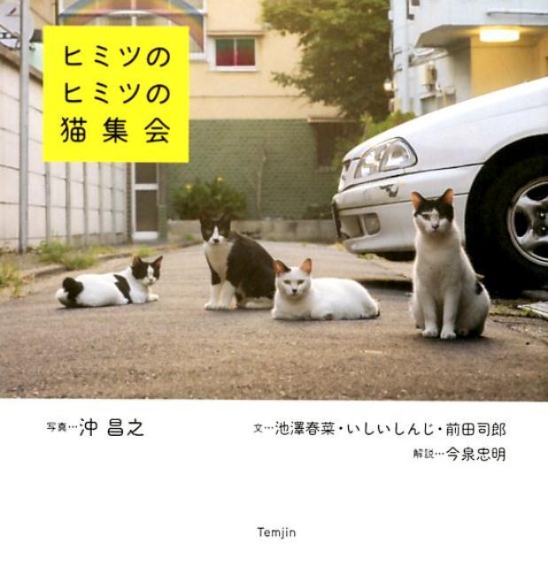 秘密の秘密の猫集会