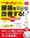 NHKガッテン! 腰痛をラクに改善する!科学の特効ワザ (生活シリーズ) [ NHK科学・環境番組部 ]