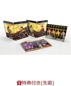 【先着特典】【楽天ブックス限定 オリジナル配送BOX】MOMOCLO MANIA 2019 ROAD TO 2020 史上最大のプレ開会式 LIVE DVD(4 Postcard Set付き) [ ももいろクローバーZ ]