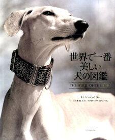 世界で一番美しい犬の図鑑 [ タムシン・ピッケラル ]