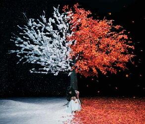 茜さす/everlasting snow