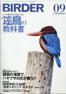 BIRDER (バーダー) 2020年 09月号 [雑誌]