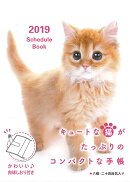Schedule Book CAT(2019)
