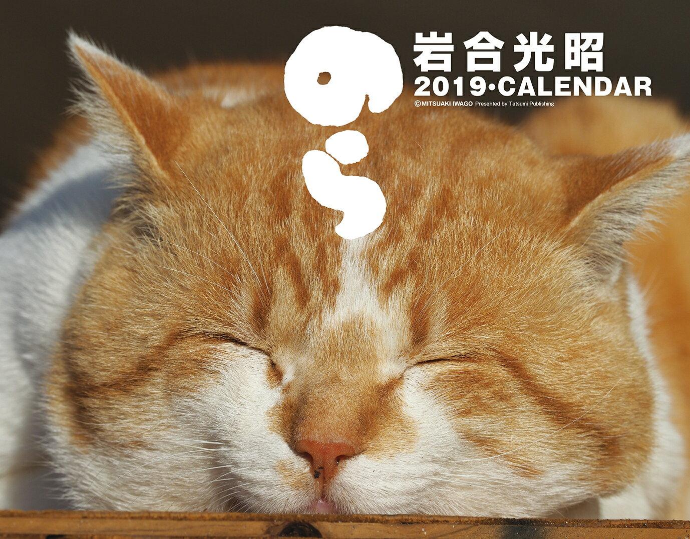 猫カレンダーのら(2019) ([カレンダー])
