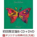 【楽天ブックス限定先着特典】Dropout / umbrella (初回限定盤B CD+DVD)(チケットホルダー)