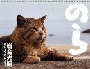 猫カレンダー のら 2013