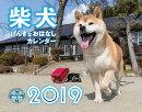 柴犬げんきなおはなしカレンダー(2019)