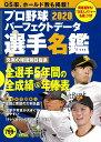 プロ野球パーフェクトデータ選手名鑑2020 (別冊宝島)