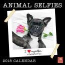 Animal Selfies I Love Myselfie 2018 Wall Calendar