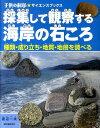 採集して観察する海岸の石ころ 種類・成り立ち・地質・地層を調べる (子供の科学・サイエンスブックス) [ 渡辺一夫…