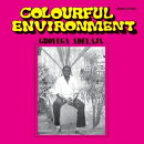 【輸入盤】Colourful Environment